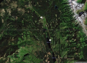 """The Colt Summit project area is located in the upper-center portion by the """"83"""" and bend in the road.  The surrounding area (including the portions of the Lolo National Forest, State DNRC lands and private lands) have been heavily logged and roaded, significantly compromising critical habitat for lynx, grizzly bears, bull trout and other critters."""