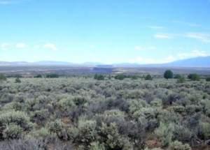 Utah's Sagebrush Rebellion Awakens – The Smokey Wire : National
