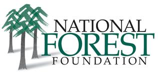 NFF logo(mastr) RGB-sm